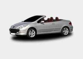 FIAT 307 CC